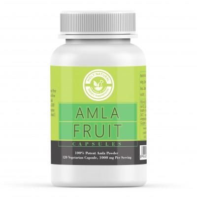 Holy Natural the Wonder of World Amla Fruit Capsule